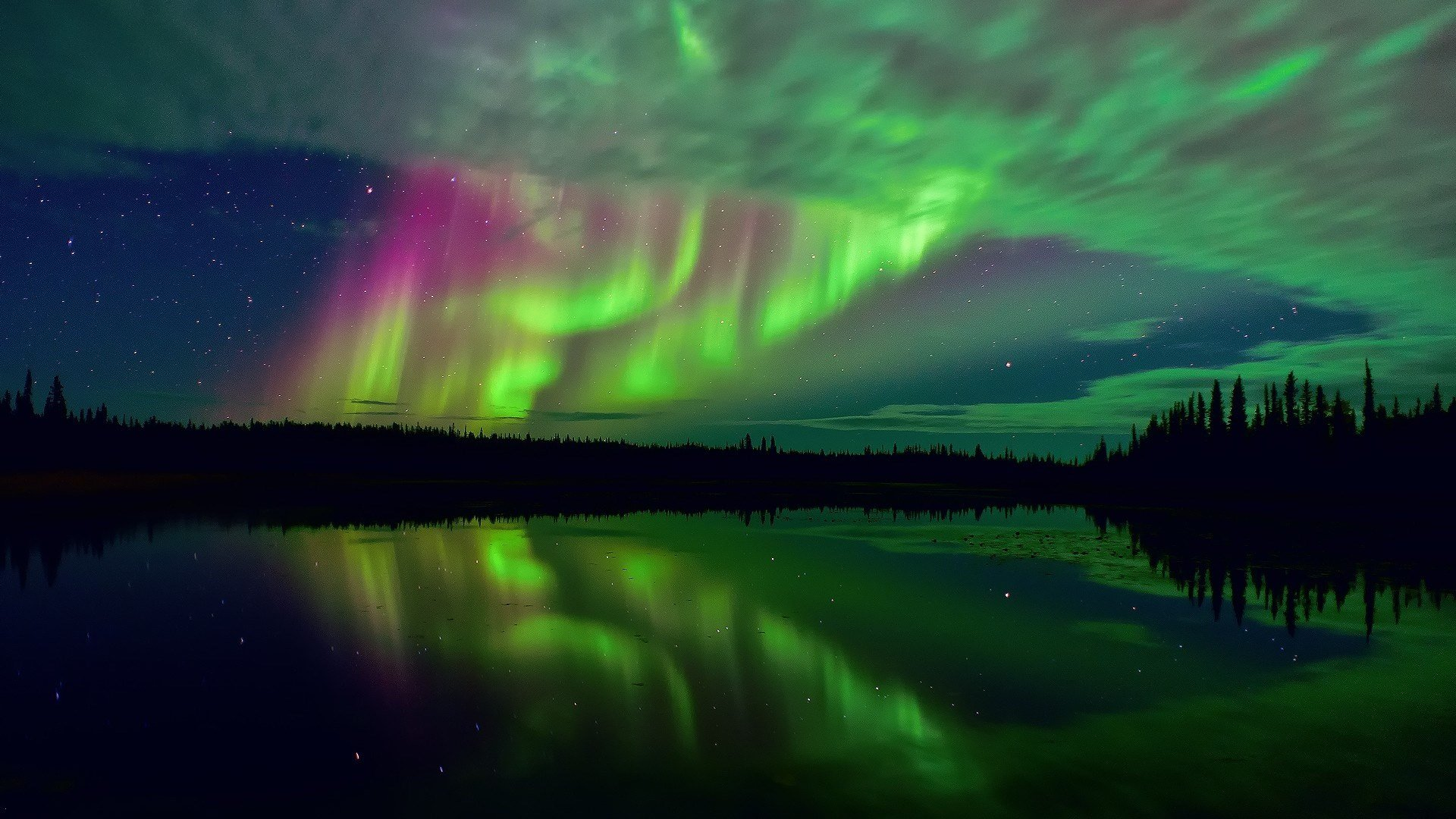 While Far Northern Latitudes Will Enjoy Excellent Viewing Conditions, Much  Of The United States Will Still See The Northern Lights.